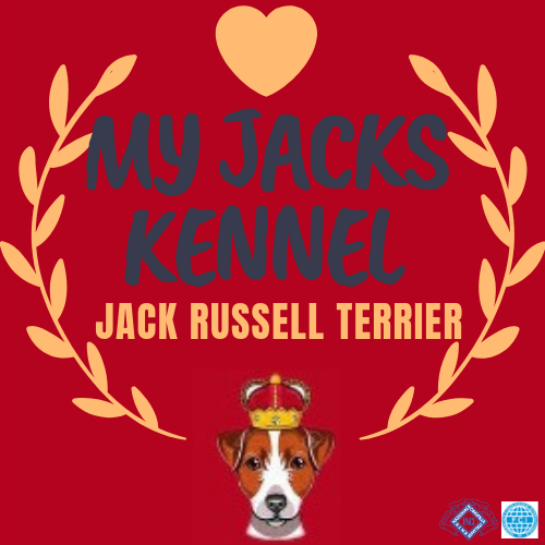 My Jacks kennel